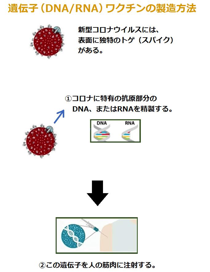 遺伝子ワクチン