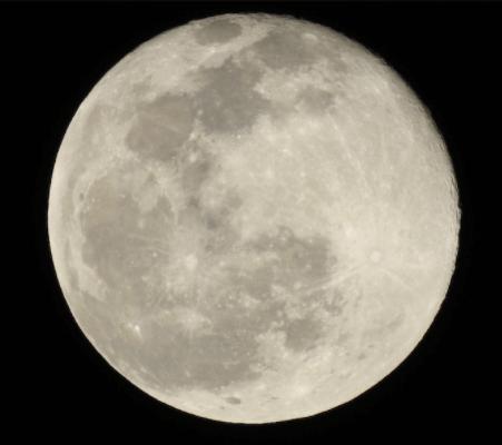 月・Nikonカメラ